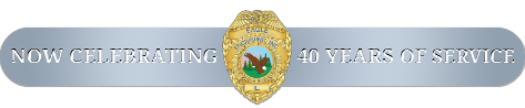 Eagle Engraving Footer